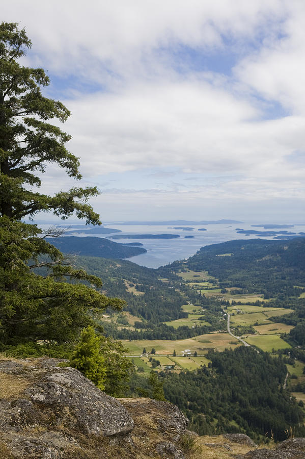 Salt Spring Island Photograph - A View Of The Farms Of The Island by Taylor S. Kennedy