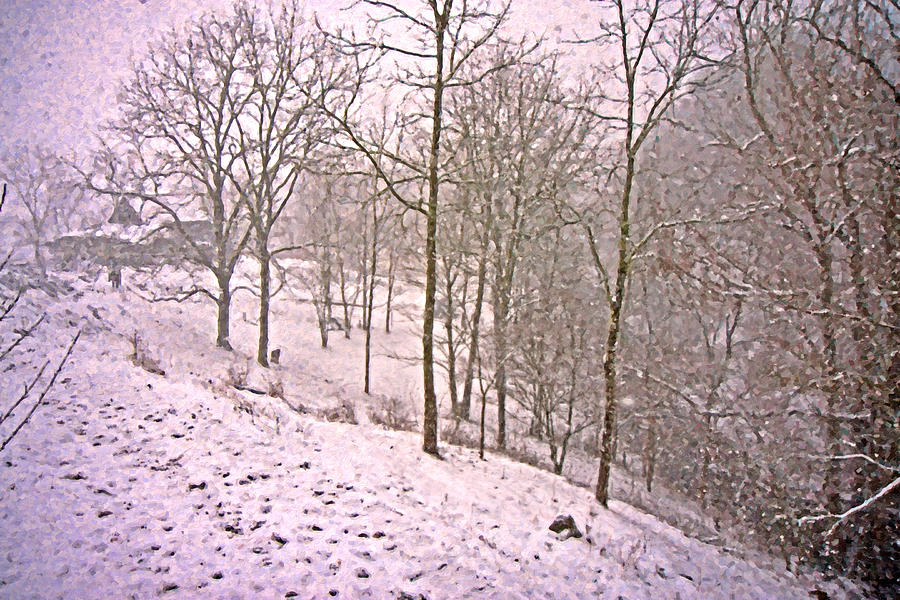 Virginia Digital Art - A Walk In The Snow by Betsy Knapp