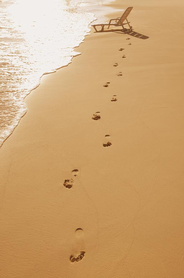 Beach Photograph - A Walk On The Beach by Don Hammond