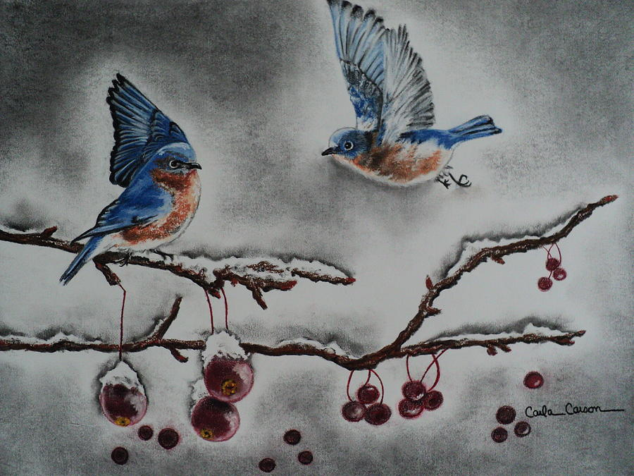 Winter Drawing - A Warm Winter Welcome by Carla Carson