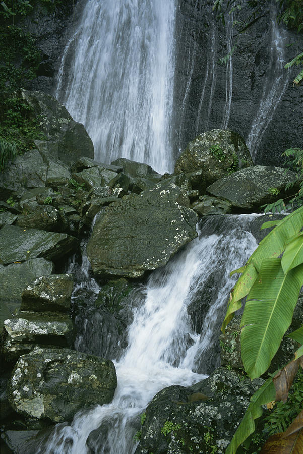 Water Photograph - A Waterfall In El Yunque, Puerto Rico by Taylor S. Kennedy