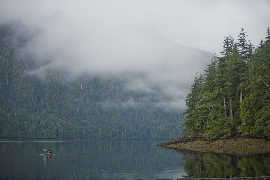 Queen Charlotte Islands Photograph - A Woman Kayaks Along A Quiet Inlet by Taylor S. Kennedy