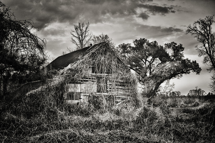 Barn Photograph - Abandoned Barn 2 by Brenda Bryant