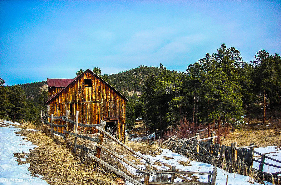 Colorado Photograph - Abandoned Barn by Shannon Harrington