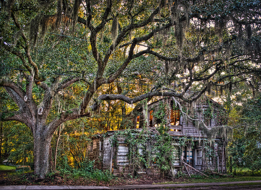 Charleston Photograph - Abandoned But Not Forgotten by Andrew Crispi