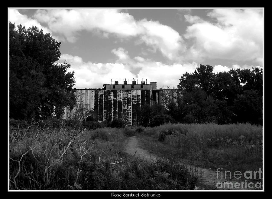Grain Elevator Photograph - Abandoned Grain Elevator In Buffalo by Rose Santuci-Sofranko