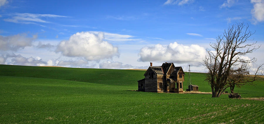 Windmill Photograph - Abandoned House On Green Pasture by Steve McKinzie