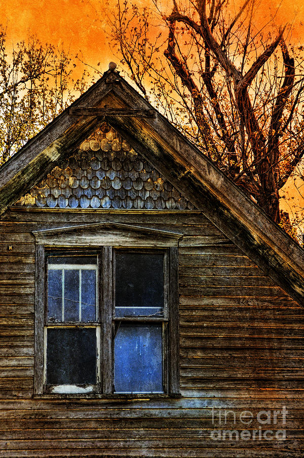 Abandoned Photograph - Abandoned Old House by Jill Battaglia