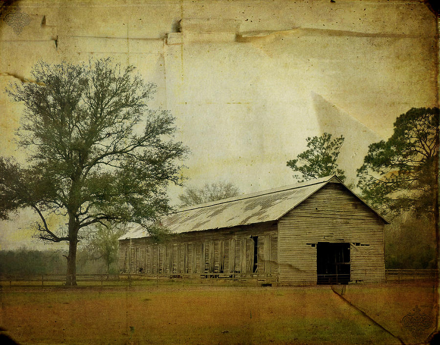 Old Photograph - Abandoned Tobacco Barn by Carla Parris