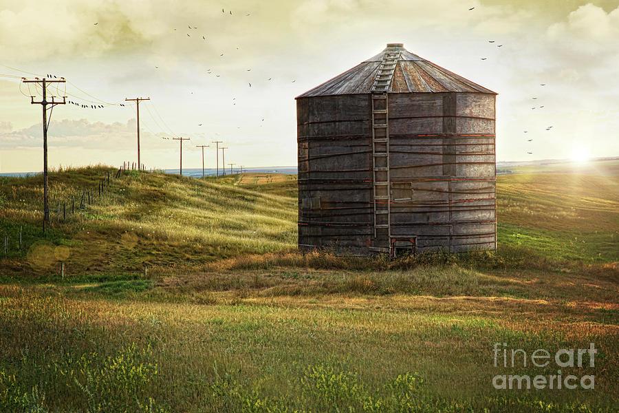 Wood Grain Storage : Abandoned wood grain storage bin in saskatchewan