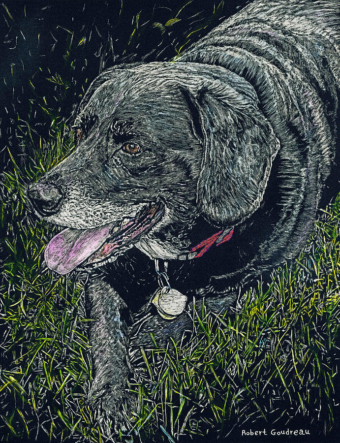 Dogs Painting - Abbe The Dog by Robert Goudreau
