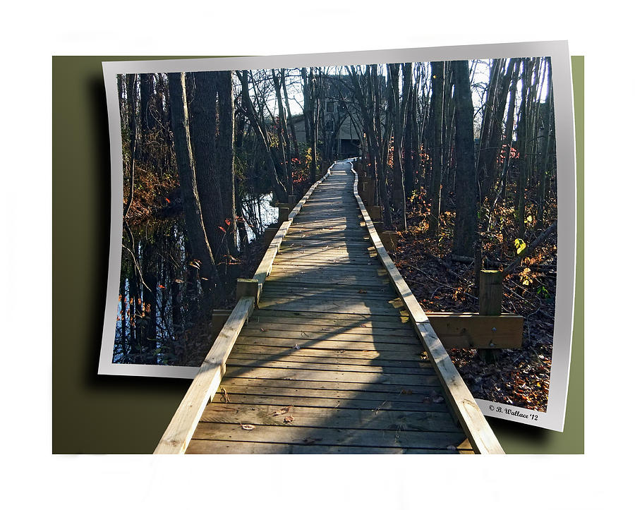 2d Photograph - Abbotts Nature Trail by Brian Wallace