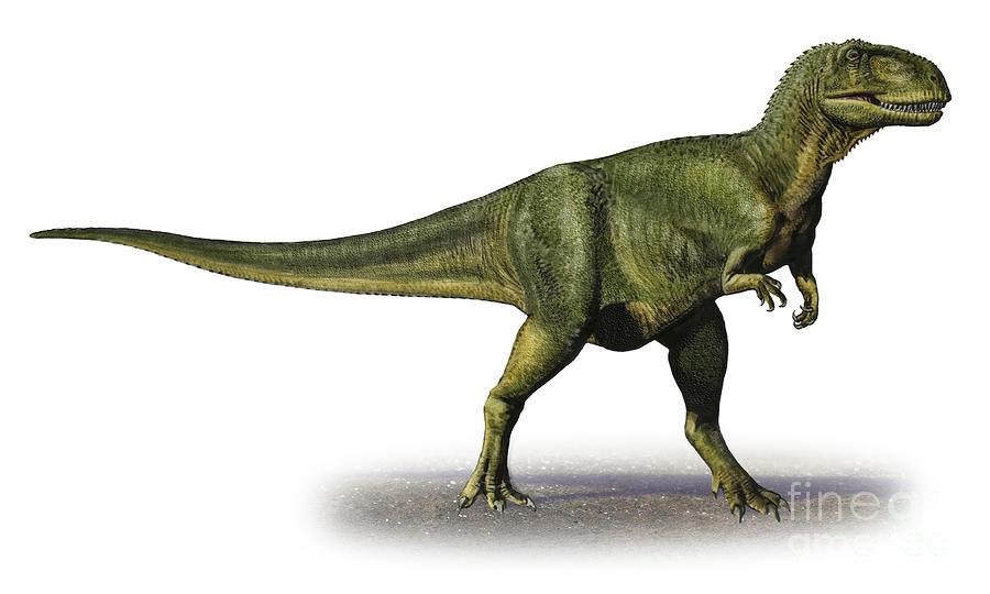 Horizontal Digital Art - Abelisaurus Comahuensis, A Prehistoric by Sergey Krasovskiy