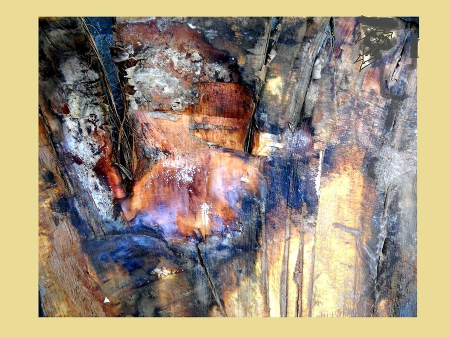 Abstract - Bark  Photograph by Basant Soni