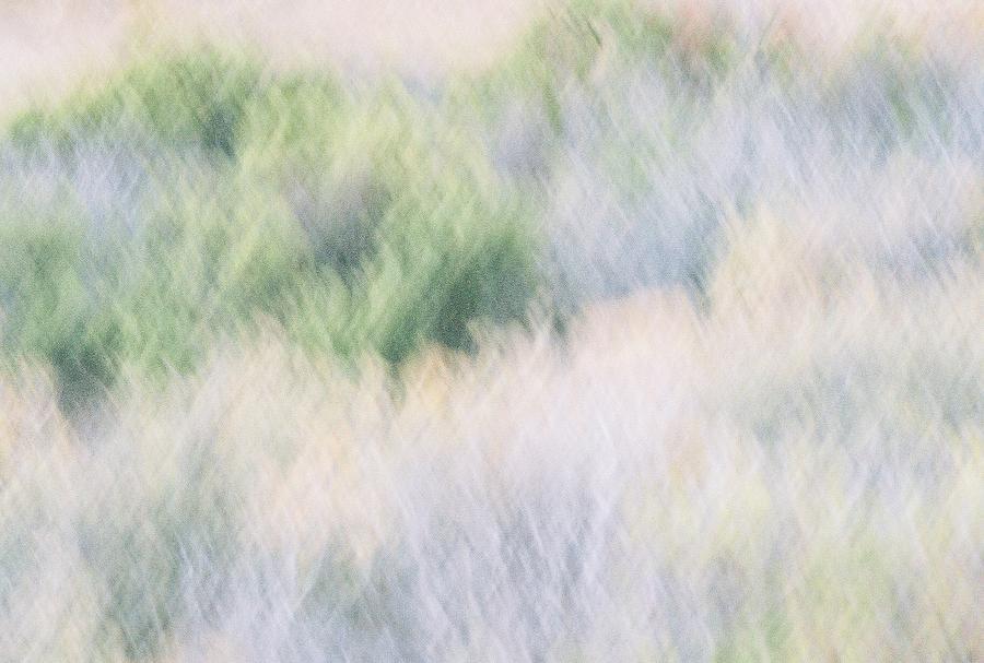 Desert Photograph - Abstract Desert by