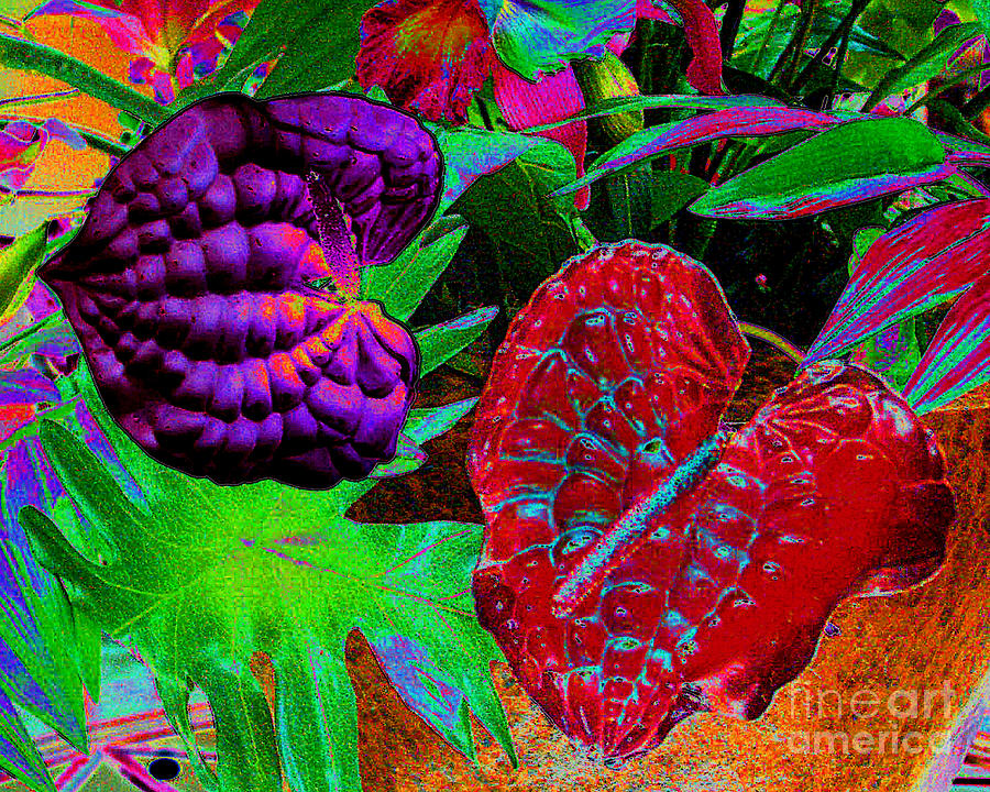 Floral Photograph - Abstract Digital Painting Of Spath Flowers by Merton Allen