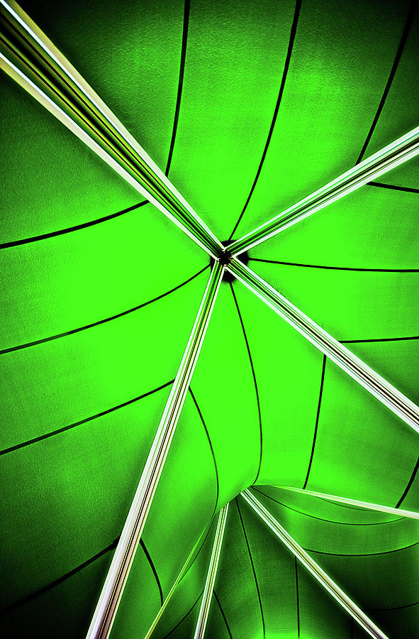 Green Photograph - Abstract Of Green by Meirion Matthias