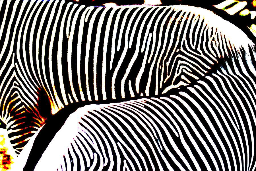 Animals Photograph - Abstract Zebra 002 by Lon Casler Bixby