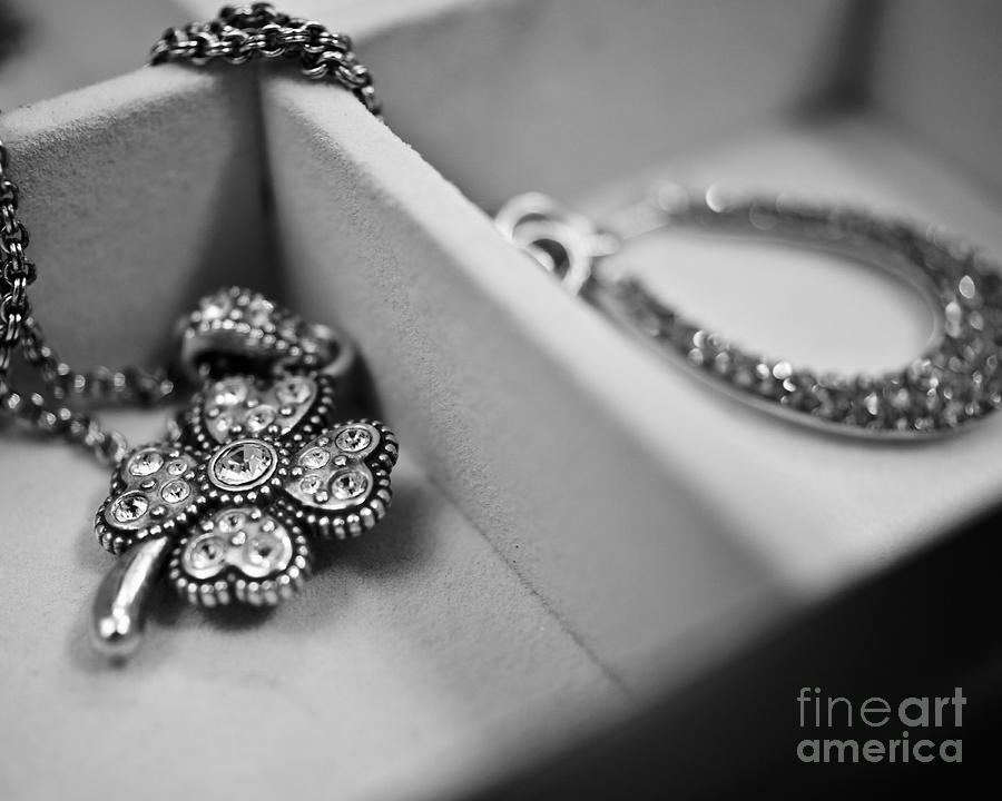 Accessories Photograph - Accessorize  by Andrea Hurley