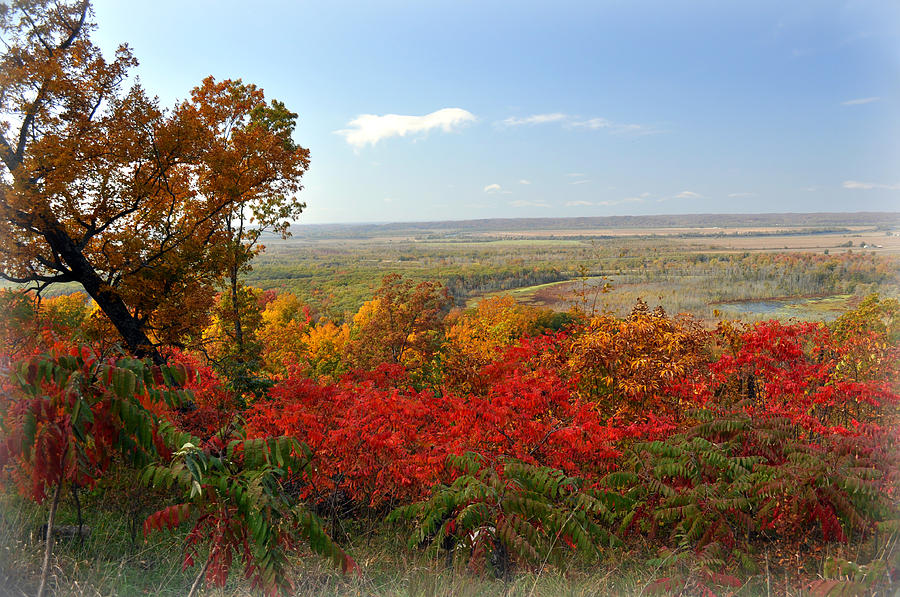 Fall Colors Photograph - Across The Big Muddy by Marty Koch