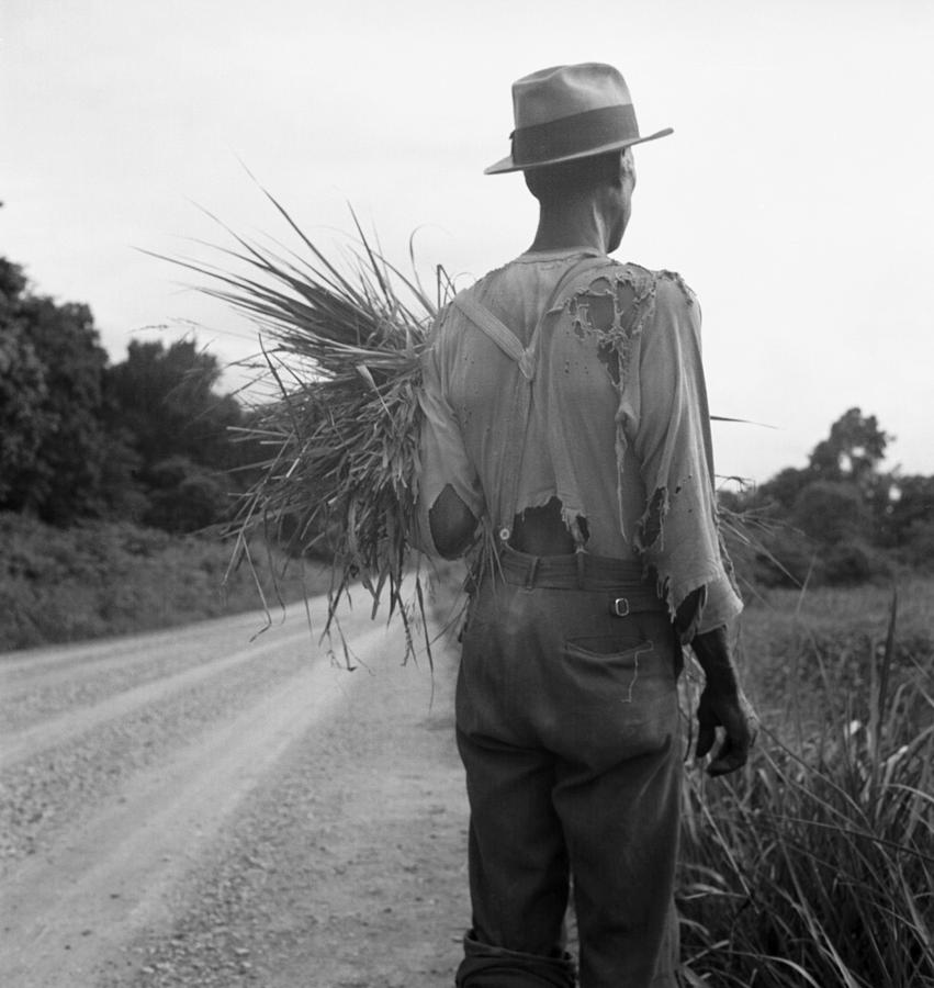 History Photograph - African American Man In Living In Rural by Everett
