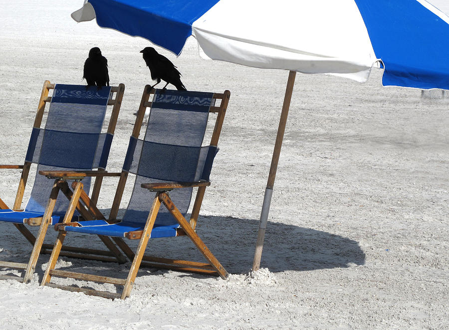 Beach Pyrography - After Season by Monika A Leon