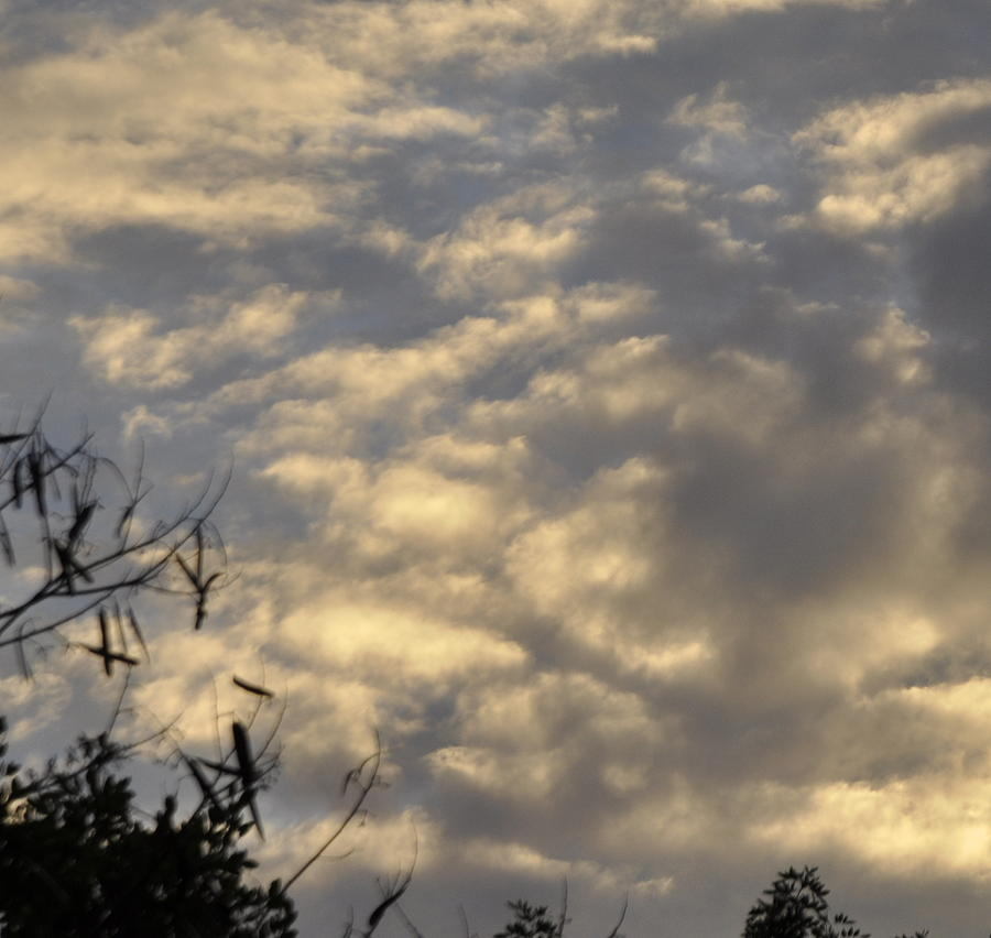 Sun Photograph - After The Storm by Sandy Poore