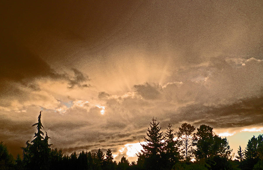 Washington State Photograph - After The Storm by Seth Shotwell