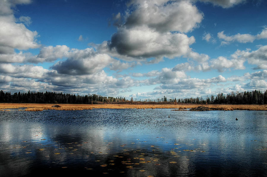 Landscape Photograph - Afternoon Reflections At The Marsh by Heather  Rivet
