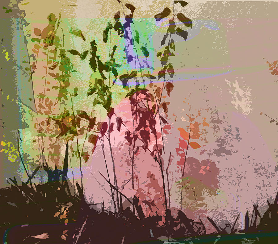Abstract Photograph - Against The Wall by Lenore Senior