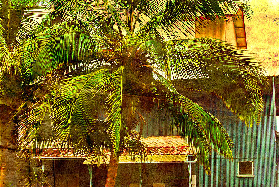 Interior Design Photograph - Aged Hawaiian by Paulette B Wright