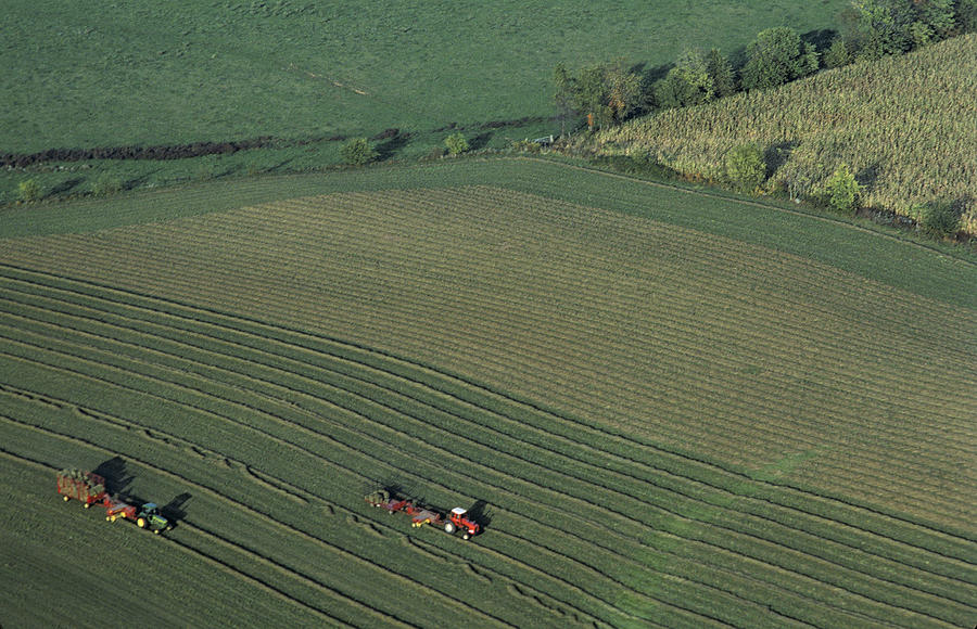 Agriculture Photograph - Agricultural Aerial View by Kenneth Garrett