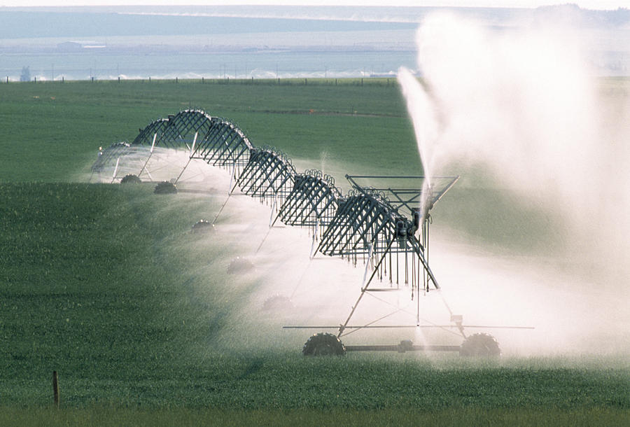 Irrigation Photograph - Agricultural Irrigation by Alan Sirulnikoff