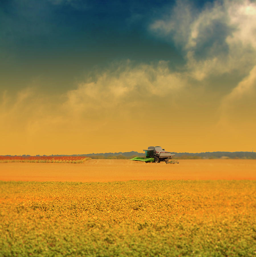 Square Photograph - Agricultural Landscape At Sunrise by Photo by Jim Norris