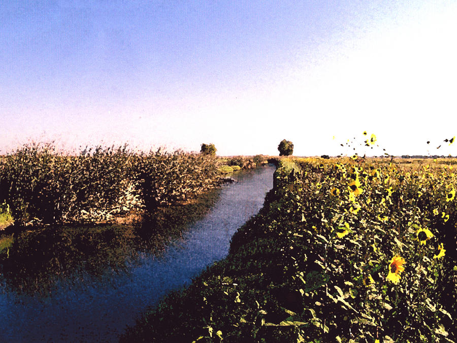 Landscape Photograph - Airport Canal by Eunice Olson