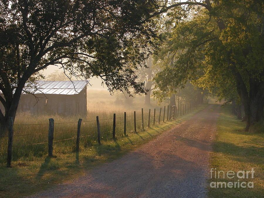 Alabama Photograph - Alabama Morning by Don F  Bradford