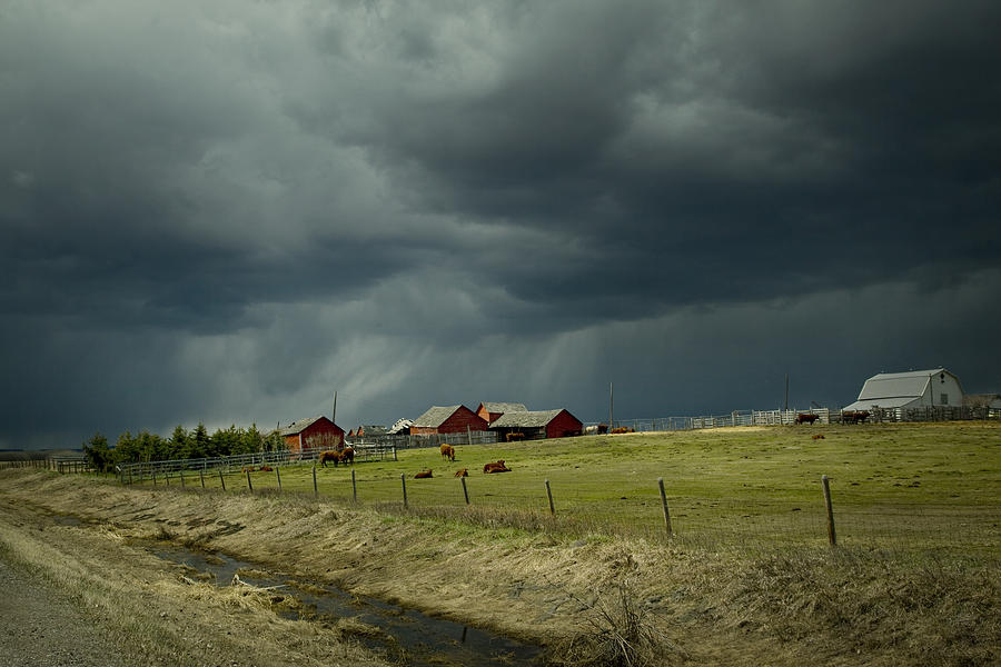 Alberta Stormy Weather Digital Art By Diane Dugas