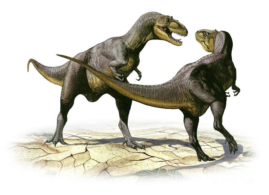Horizontal Digital Art - Alectrosaurus Olseni, A Prehistoric by Sergey Krasovskiy