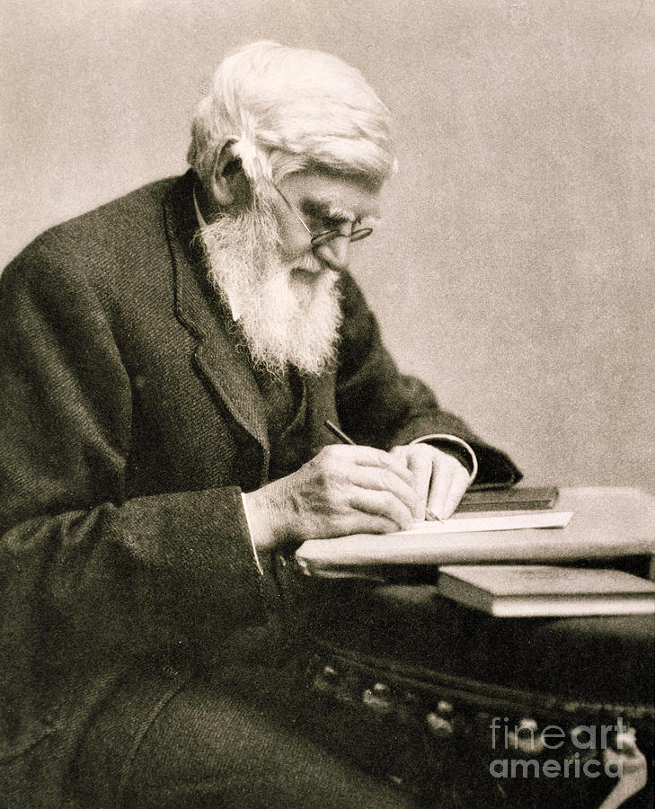 the life of alfred wallace Biography early life alfred wallace was born in the welsh village of llanbadoc, near usk, monmouthshire he was the seventh of nine children of thomas vere wallace and mary anne greenell.