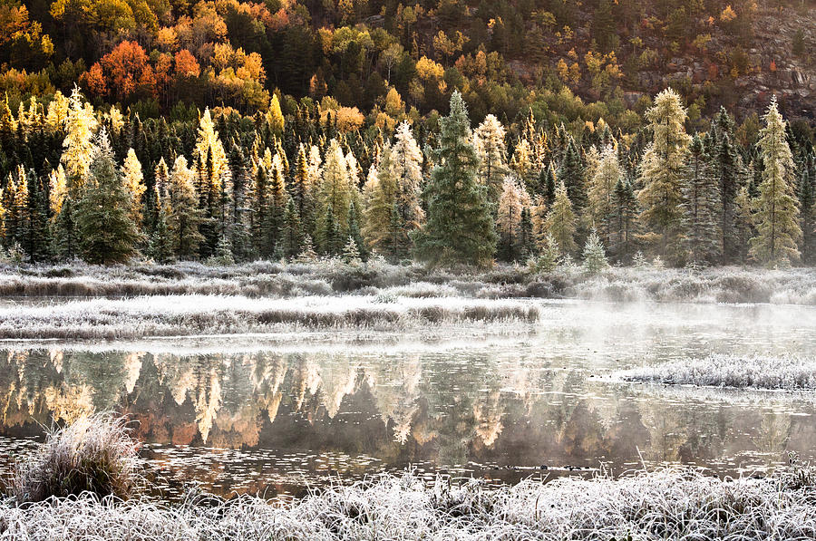 Landscape Photograph - Algonquin Morning Frost by Mark Highfield