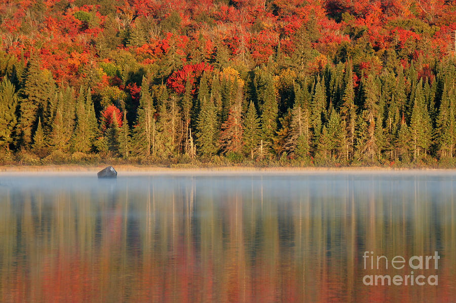 Reflection Photograph - Algonquin Reflections by Chris Hill