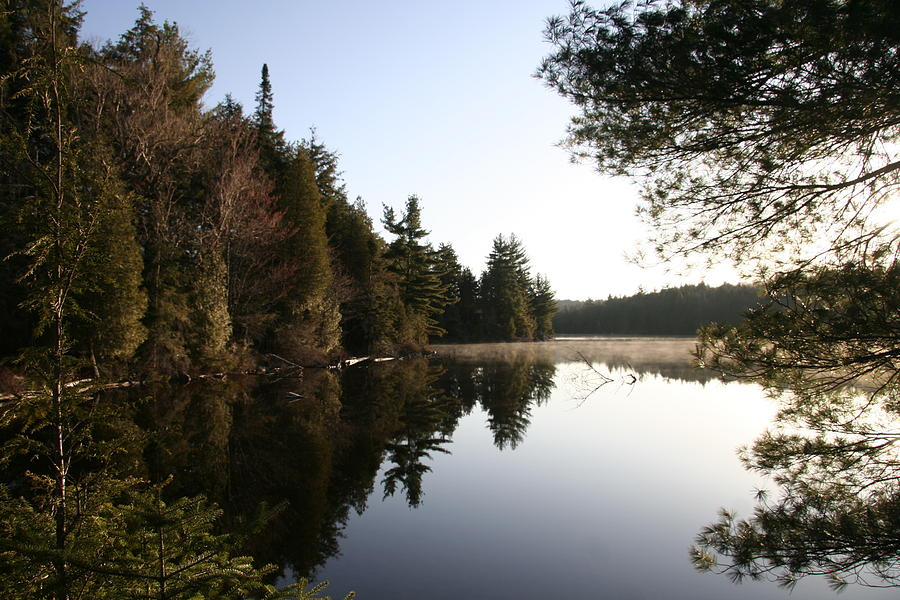 Water Photograph - Algonquin View by Dr Carolyn Reinhart