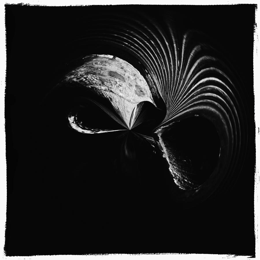 Abstract Photograph - Alien Mask by Skip Nall