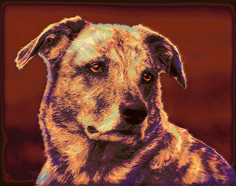 Mutt Digital Art - All American Mutt 2 by Jane Schnetlage