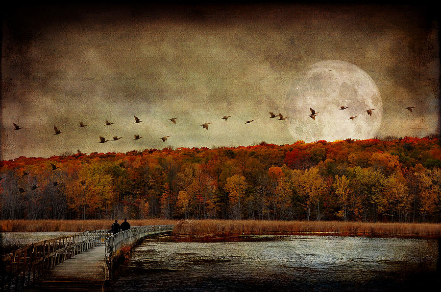 Fall Photograph - All Things Must Pass... by Marie  Gale