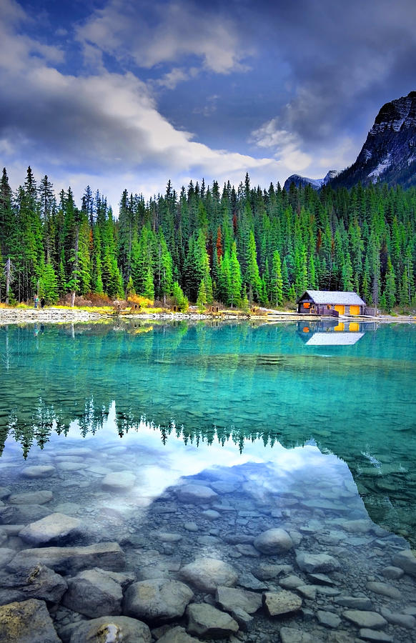 Lake Louise Photograph - All Things Reflected by Tara Turner
