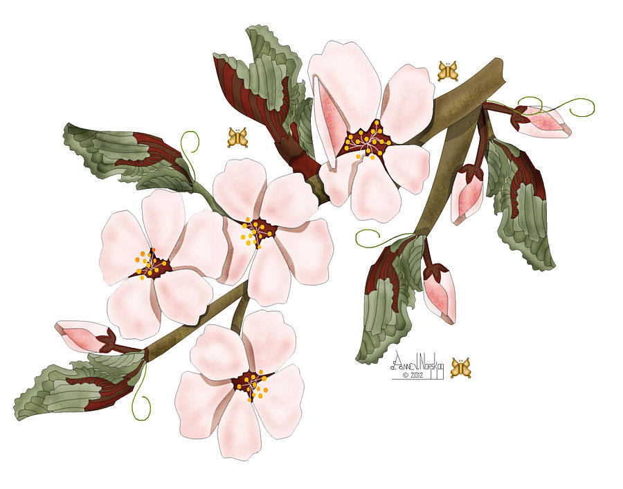Realism Painting - Almond Branch With Flowers and Leaves by Anne Norskog