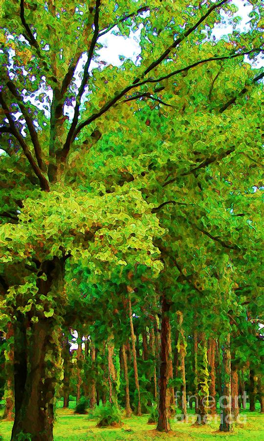 Green Photograph - Almost Fall by Steven Lebron Langston