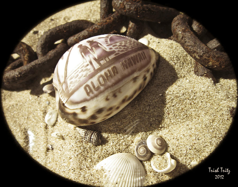 Sand Photograph - Aloha by Trish Tritz