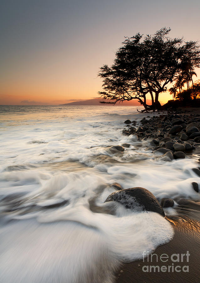 Lahaina Photograph - Alone With The Sea by Mike  Dawson